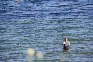 Angler_im_Wasser