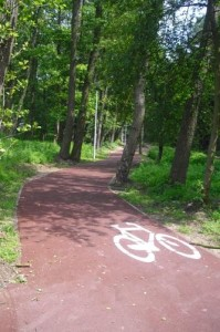 Radweg_durch_Wald